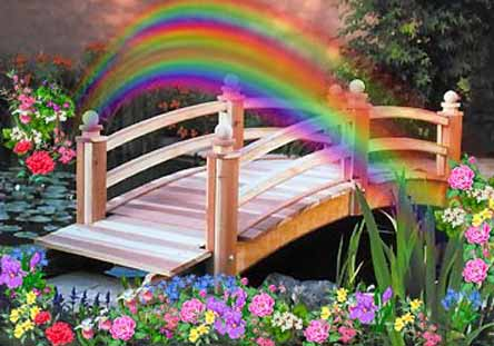 Send a message to your beloved pet at the Rainbow Bridge
